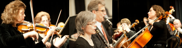 Lake Forest Civic Orchestra Musicians